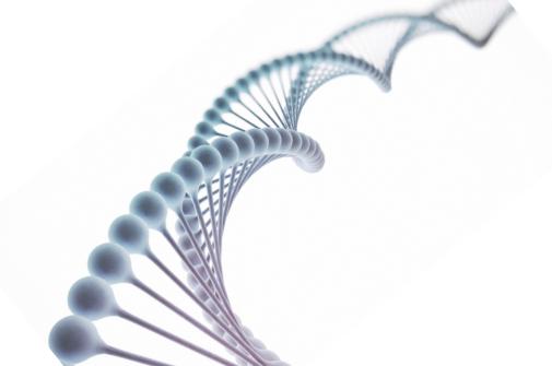 基礎DNA シータヒーリング セミナー