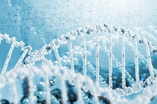 シータヒーリング 応用DNA
